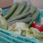 FoodSavers crate